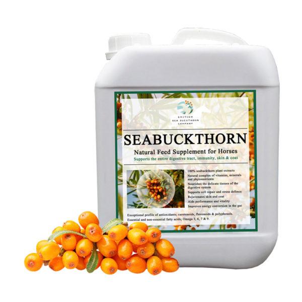 SeaBuckthorn-Supplement-for-Horses