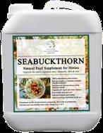 SeaBuckthorn for Horses