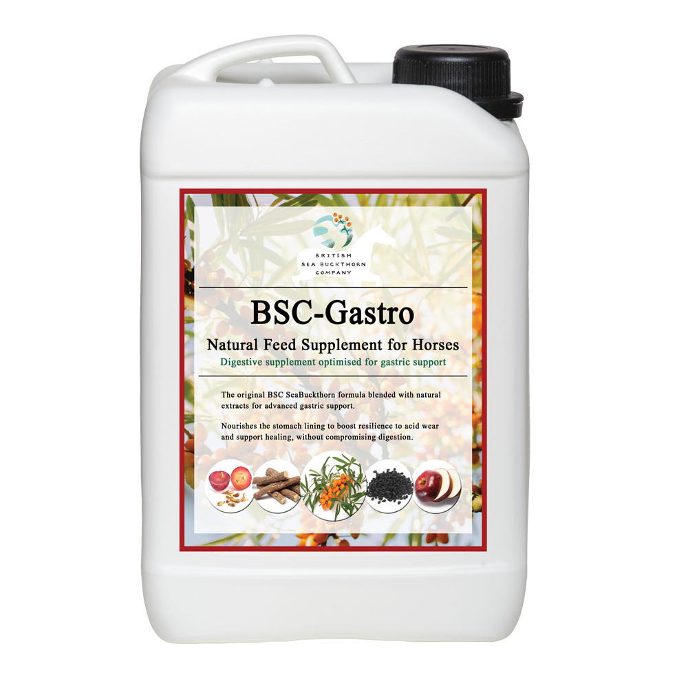 bsc gastro gastric supplement for horses