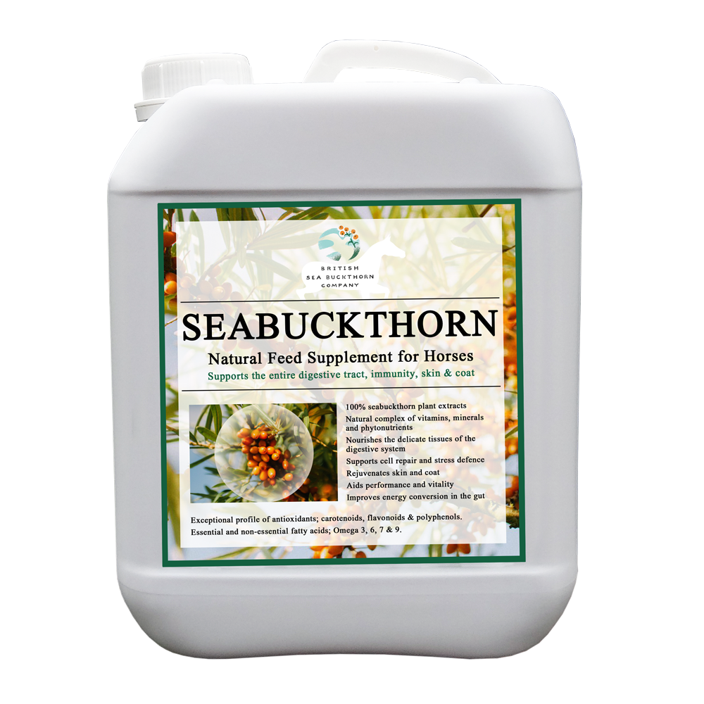 bsc seabuckthorn digestive skin and coat supplement for horses