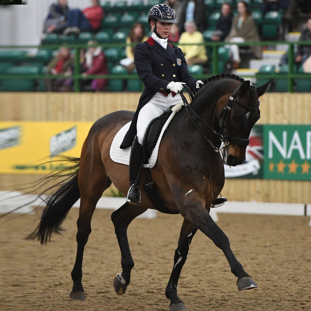 becky edwards dressage bsc gastro