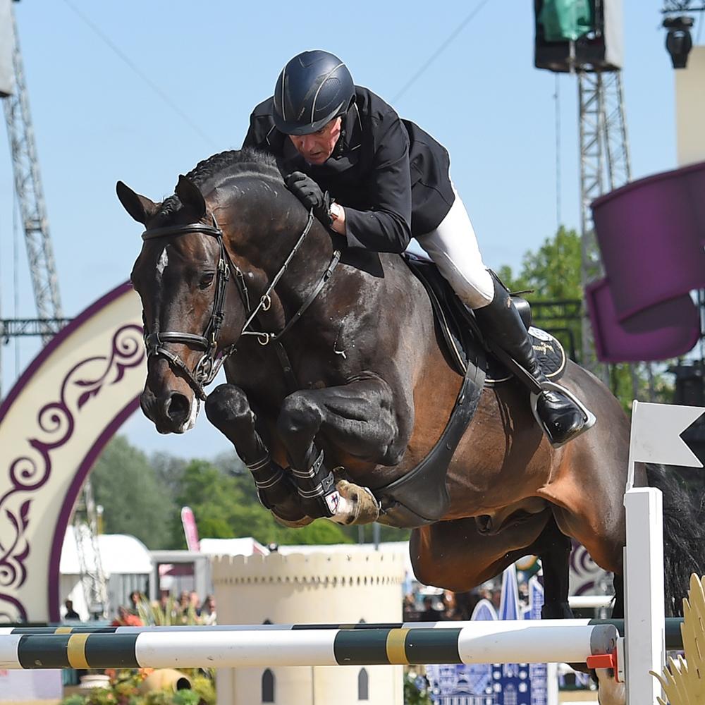 mah horse calmer_john-whitaker_argento