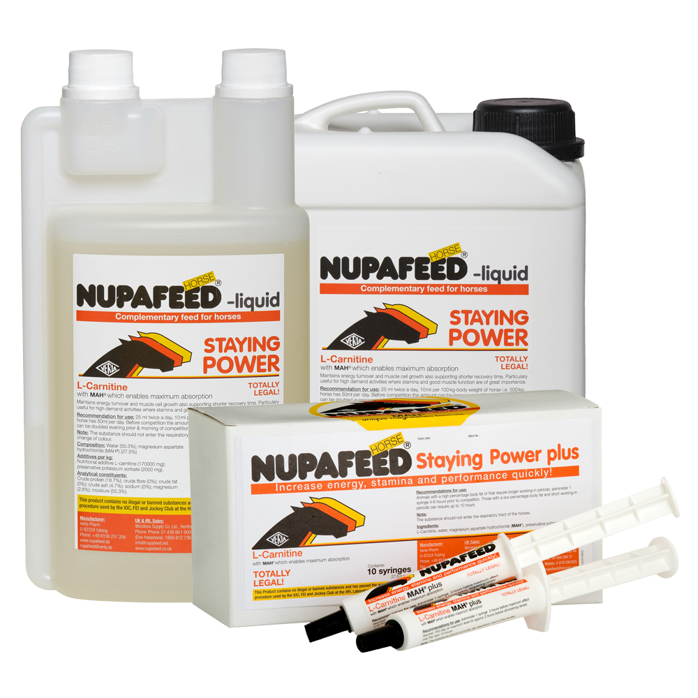 nupafeed staying power energy supplement for horses