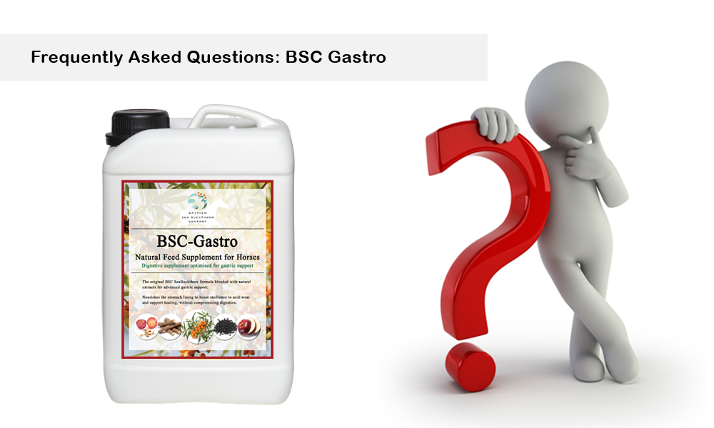 bsc gastro frequently asked questions