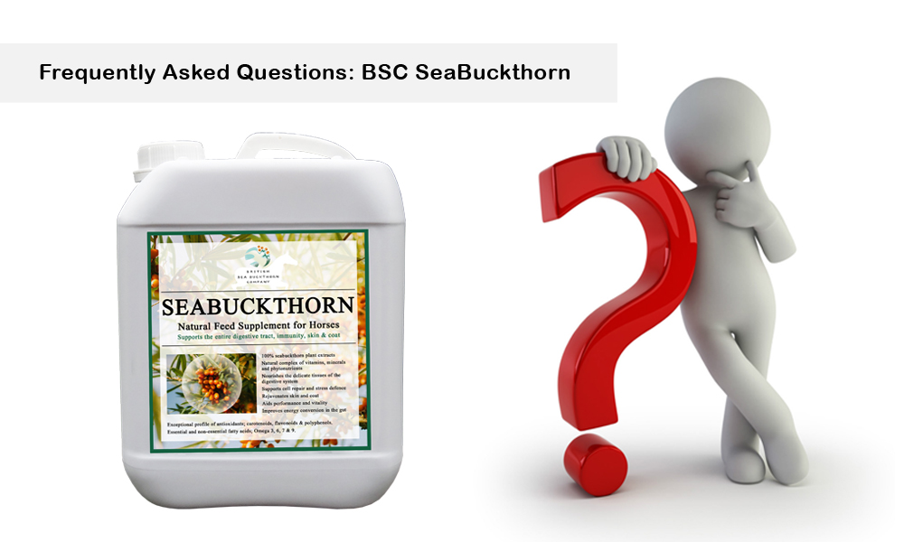 bsc seabuckthorn for horses frequently asked questions