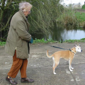 Nupafeed Dog_Stress-Less_Calming for Dogs_Jean Richards