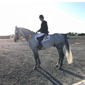 MAH Horse Calmer_Review_Debbie Cherry