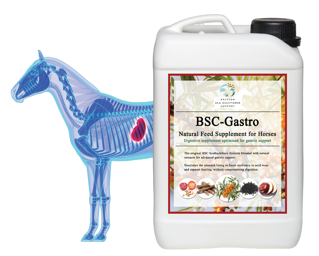 BSC-Gastro Omega Gastric Supplement for Horses