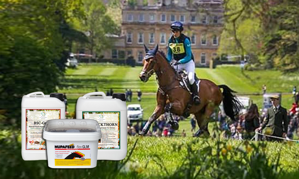 Omega Supplements for Horses