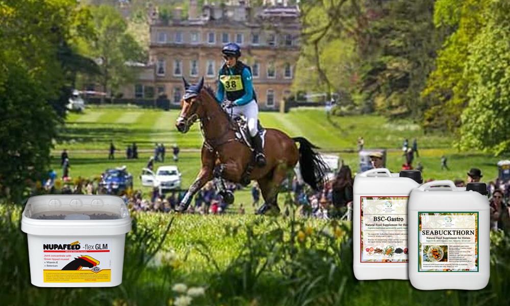 omega supplements horses